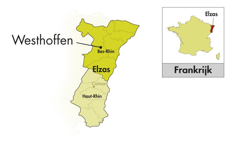 Domaine Loew Elzas Vérité Sylvaner