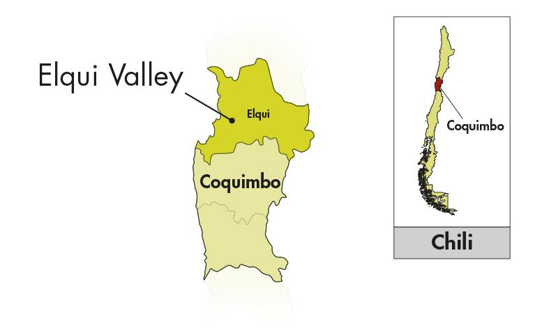 Viña Falernia Elqui Valley Sauvignon Blanc