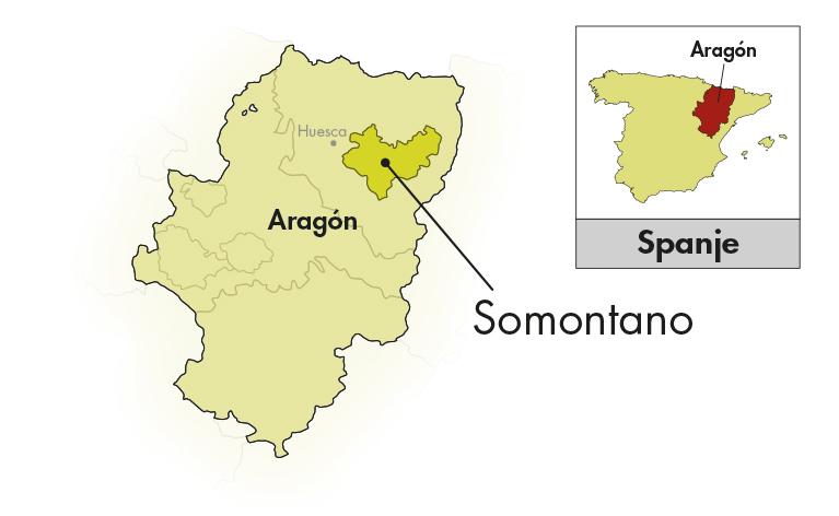 Bodegas Obergo Somontano Gewürztraminer