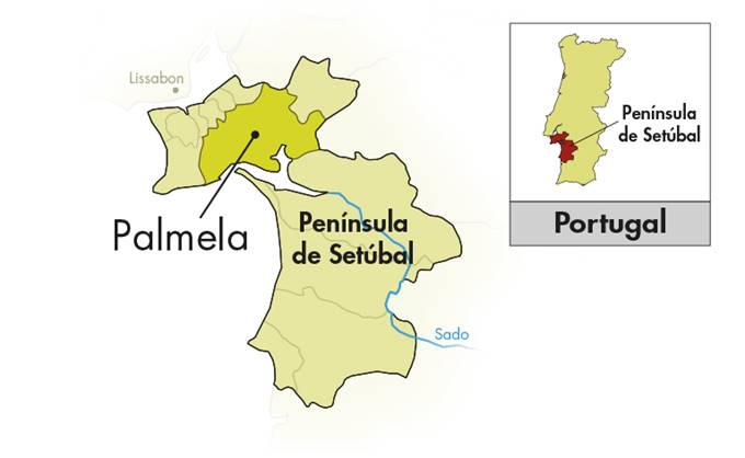 Venâncio da Costa Lima Moscatel de Sétubal Pioneiro
